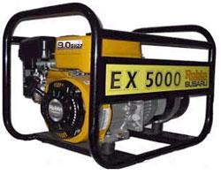 ex5000_robin